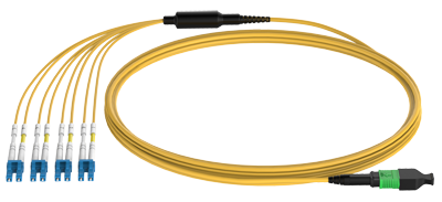 MPO to LC fanout patch cord