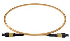 MPO to MPO SM Elite Low Loss Trunk Cable