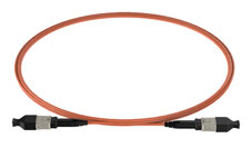 MPO to MPO OM4 12/24F Patch Cord