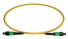 MPO to MPO SM G657A Patch Cord