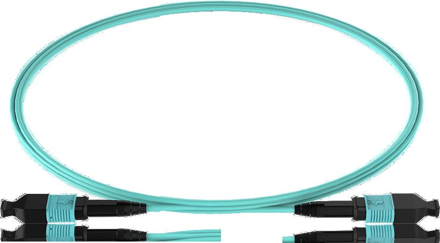FSG MPO Cable